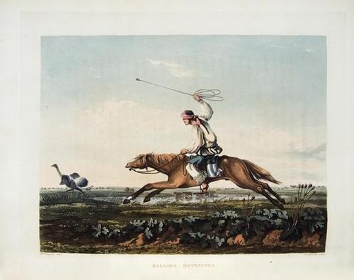 149B: VIDAL, Emeric Essex (1791-1861).   Picturesque Il