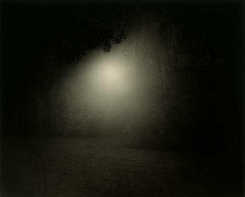 16B: SALLY MANN (b. 1951); Untitled (Deep South #7), 19
