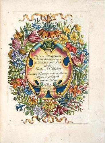 18: ROBERT, Nicolas - Variæ ac multiformes florum spec