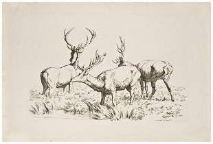 HILLS, Robert. Etchings of Red Deer.