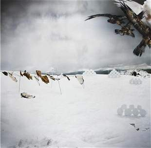 """Anthony Goicolea (b. 1971) """"Snowscape with Owls, 2"""