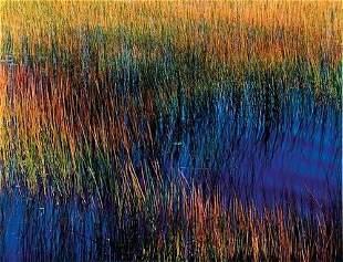 """John Wawrzonek (b. 1941) """"Textures, ca. 1988"""