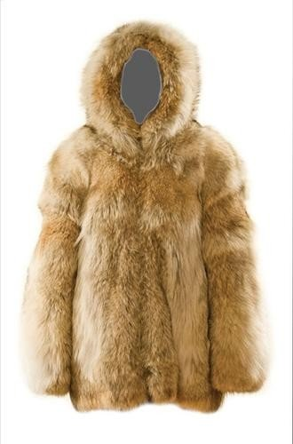 8: GOREY, Edward (1925 - 2000) Fur Coat owned and wor