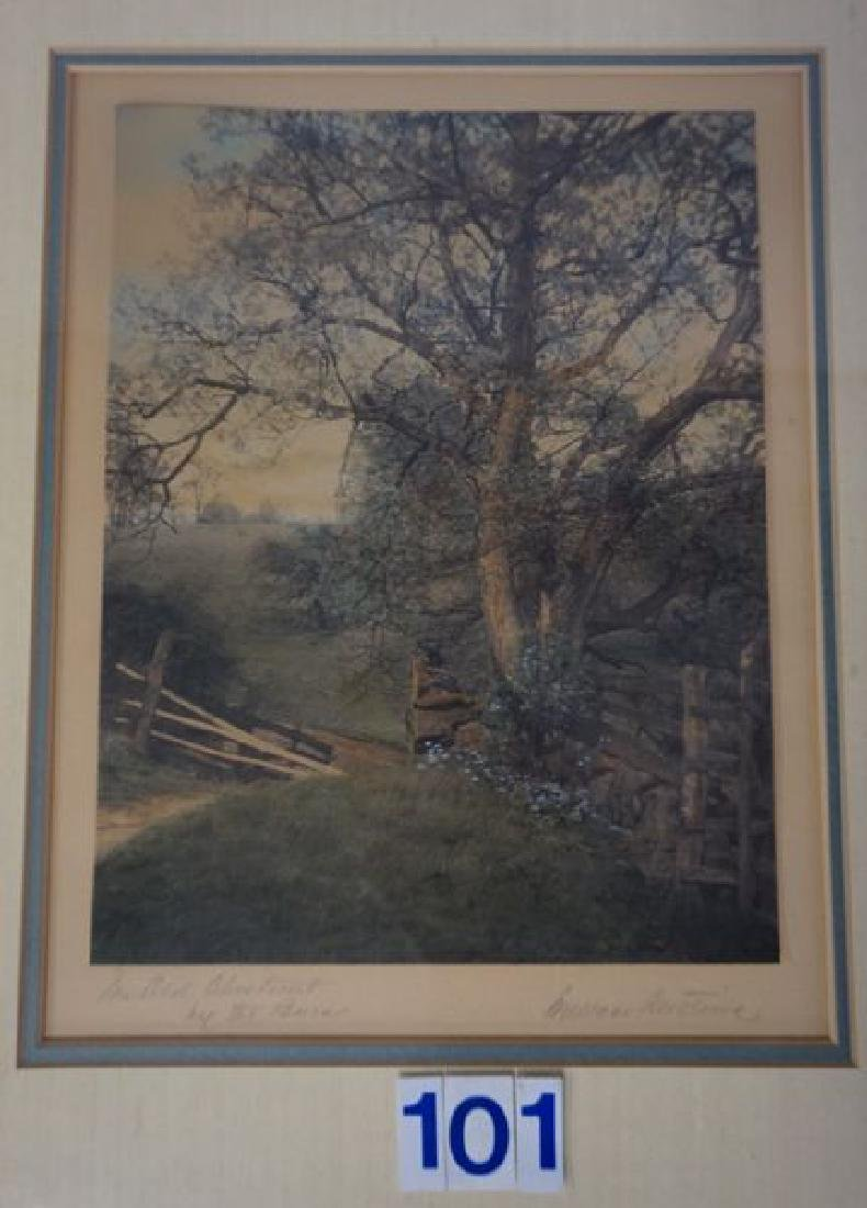 WALLACE NUTTING FRAMED & MATTED PRINT - 2