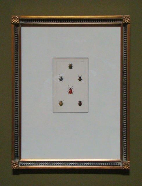101: Antique Color Ladybug print