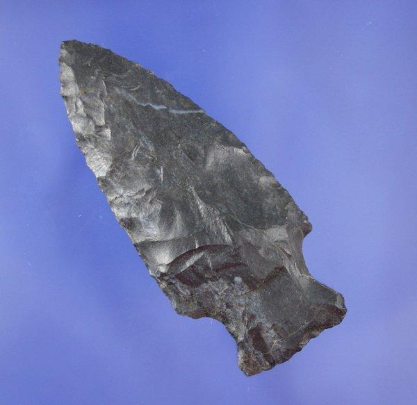 4: Motley Point  Indian Arrowhead * AACA *