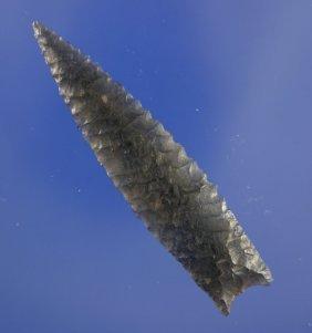"""2 1/2"""" Humboldt Found In Oregon - Davis COA"""