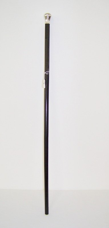 5: Early Sterling Top Walking Stick