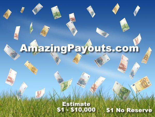 3: AmazingPayouts.com DOMAIN NAME LIVE AUCTION $1NR