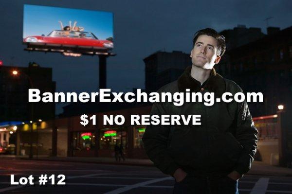 12: BannerExchanging.com DOMAIN NAME AUCTION
