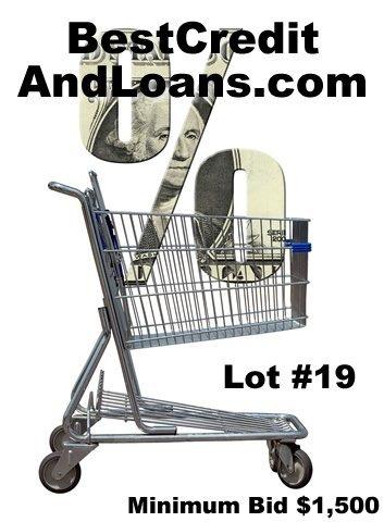 19: BestCreditAndLoans.com DOMAIN NAME AUCTION