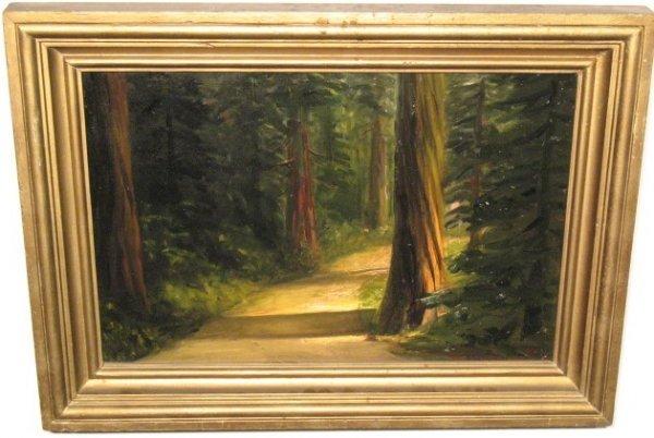 2021: Redwood Scene
