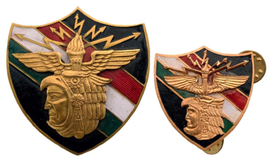 Group of 2 Mexican Aero Forces Badges