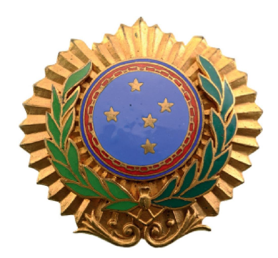 Army Officer Badge