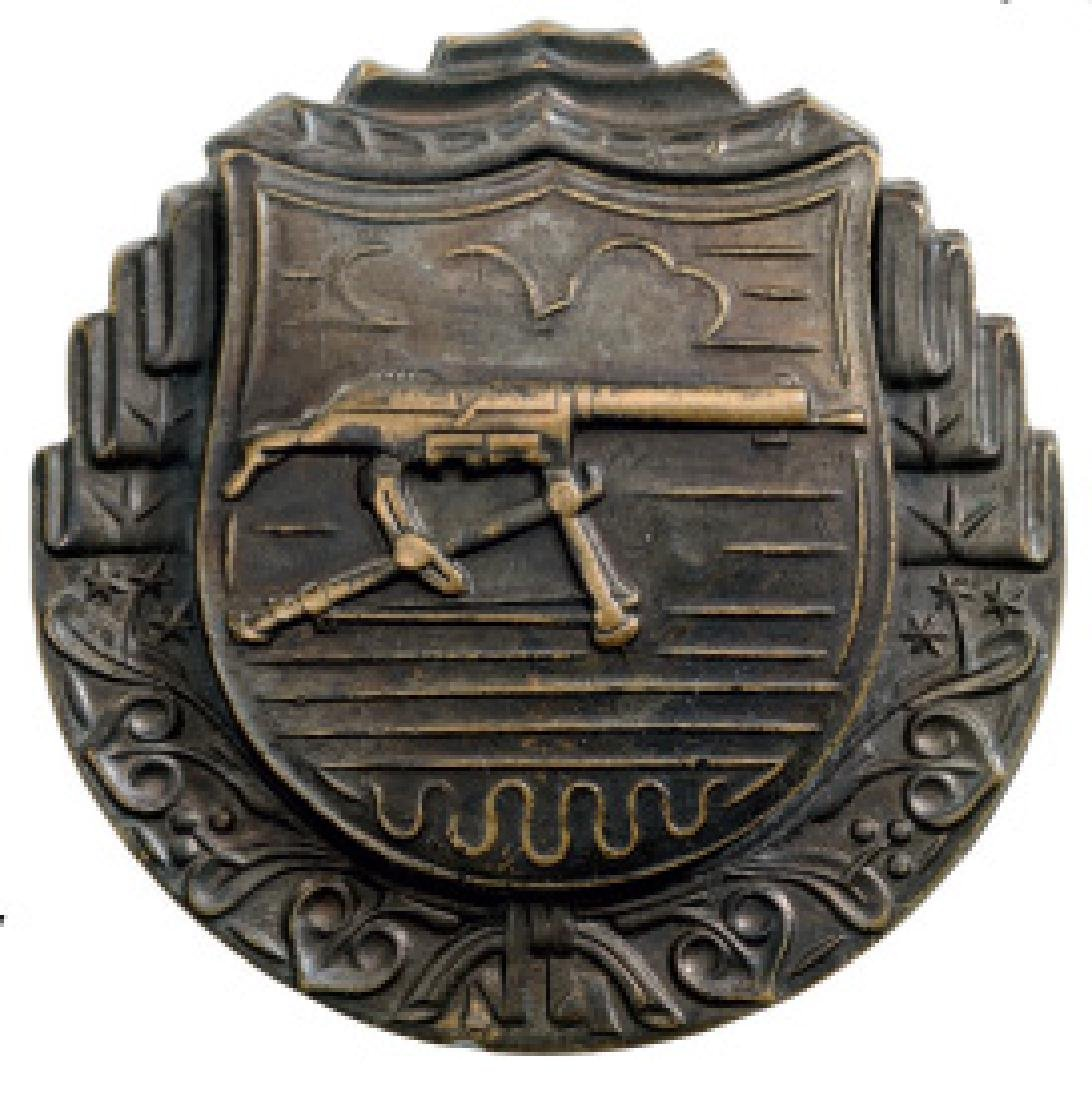 Military Badge for Specialist Machine Gunner