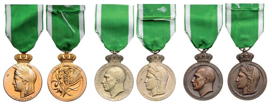 Lot of 3 Agricultural Merit Medal