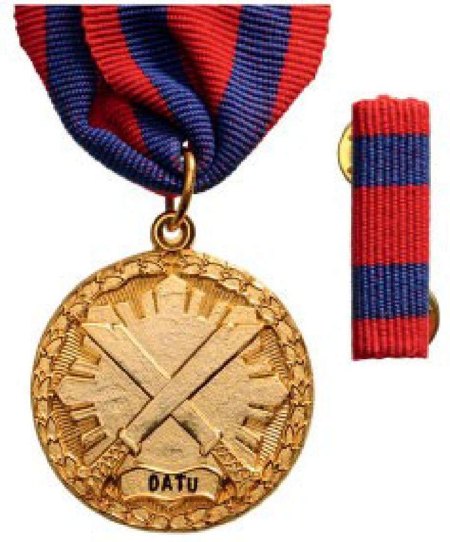 SPECIAL ACTION MEDAL
