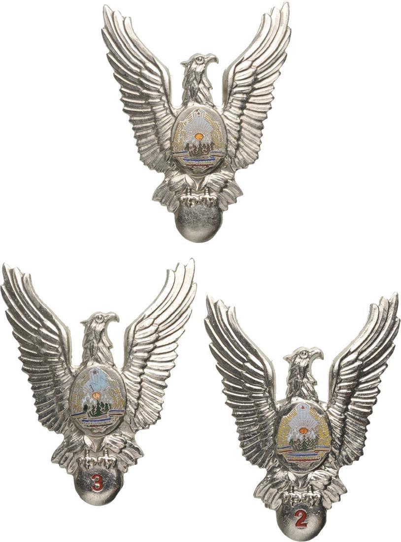 PILOT BADGES (1965-1989)