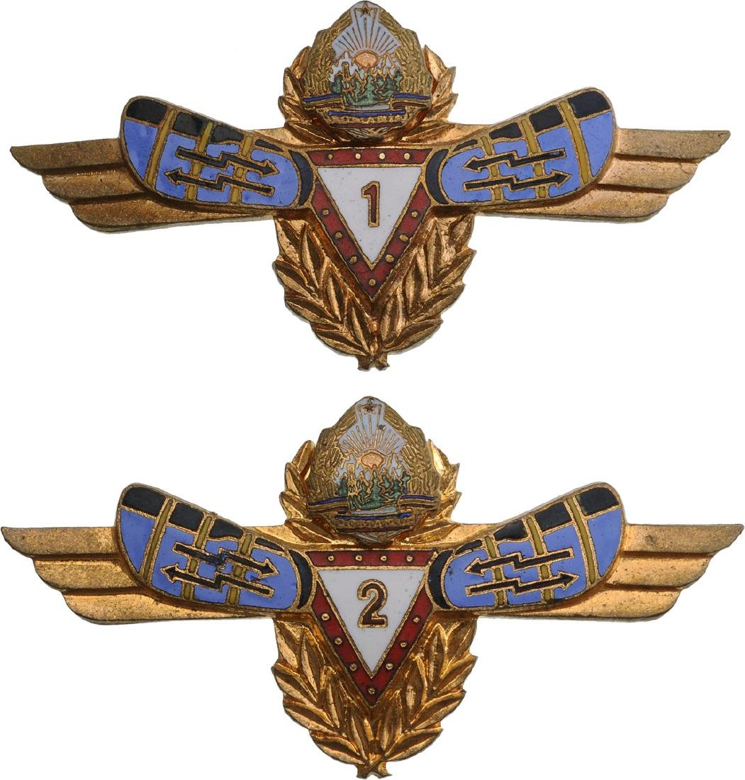 BADGES FOR SPECIALIST IN RADIO LOCATION