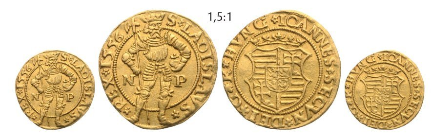 Ducat 1556 NP, Neustadt (Baia Mare), Gold, 3,48 g