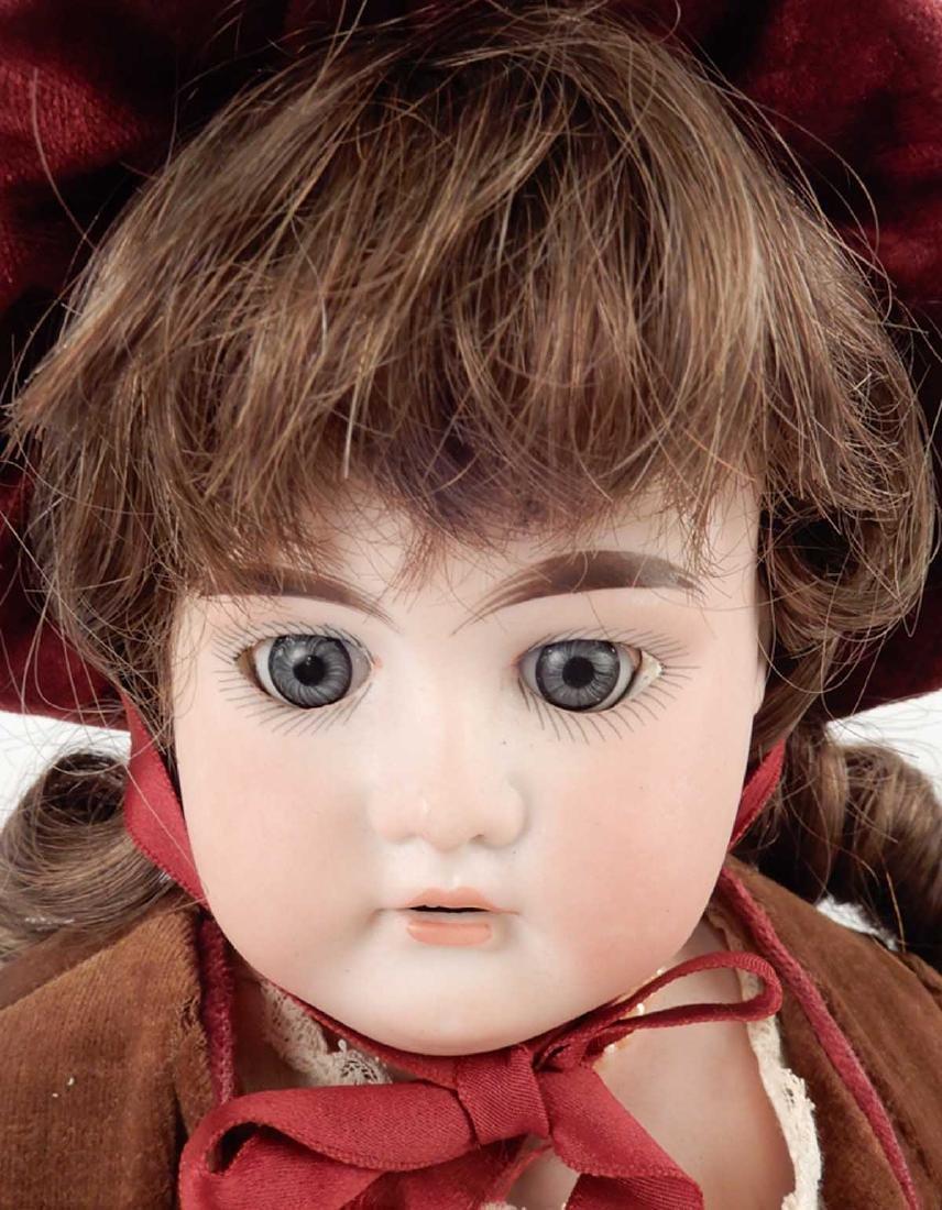 CM Bergmann Columbia bisque shoulder head doll - 2