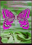 Iron Butterfly Iron ButterflyAvalon Ballroom concert