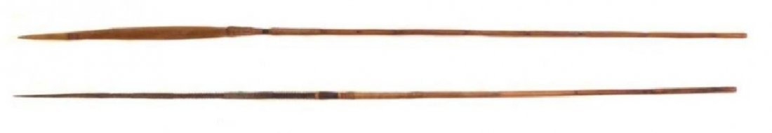 A PAIR OF AMAZON RIVER FISHING SPEARS