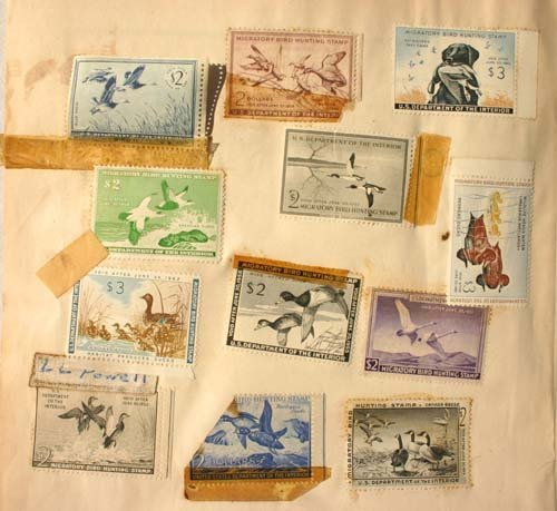 1005A: stamp album incl 1 page of Migratory bird stamps