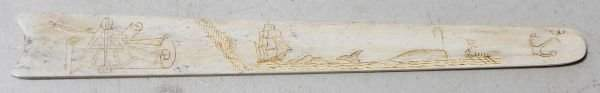 147 Great antique whale bone page turner or letter ope
