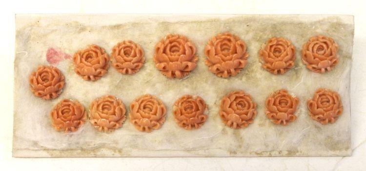 1: Sample board of 14 Chinese coral chrysanthemums - ap