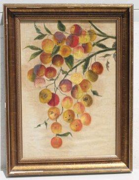 "Ca 1880's 18""x13"" Theorem On Velvet Of Peaches Hanging"