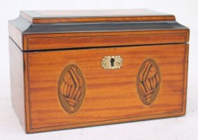 Early 19thc Satinwood Tea Caddy W Conch Shell Inlays &