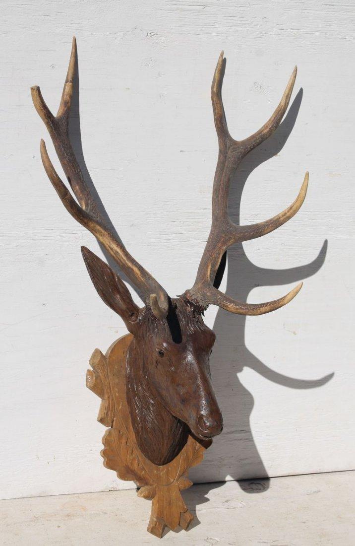 antique Black Forest carved walnut deer head - approx