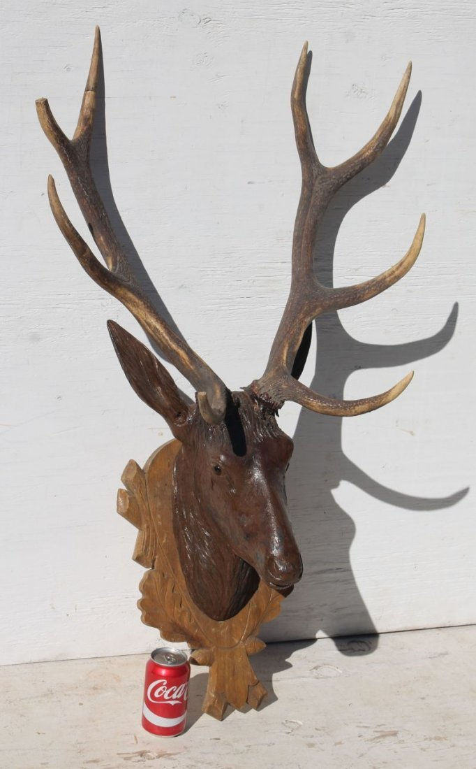 antique Black Forest carved walnut deer head - approx - 2