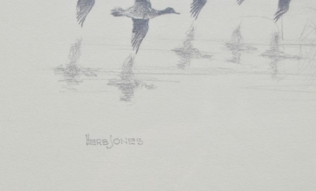Herb Jones Pencil Sketch - 4
