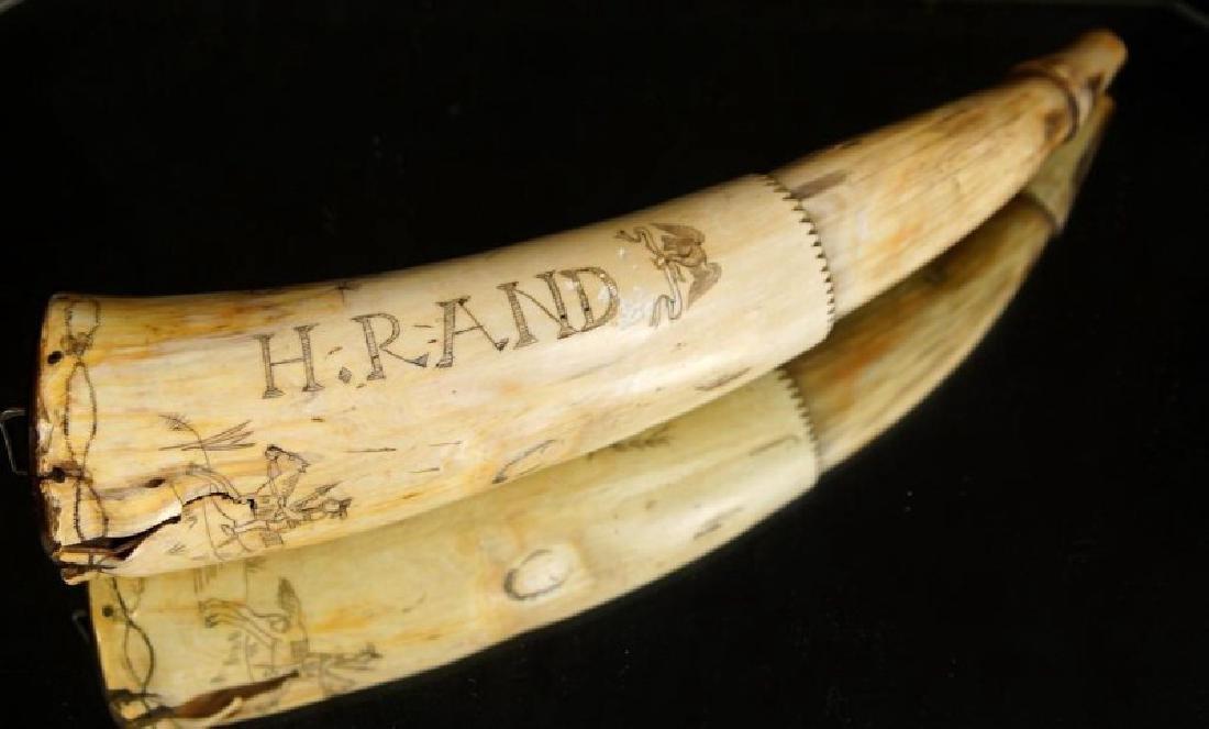 19th cent. Engraved powder horn