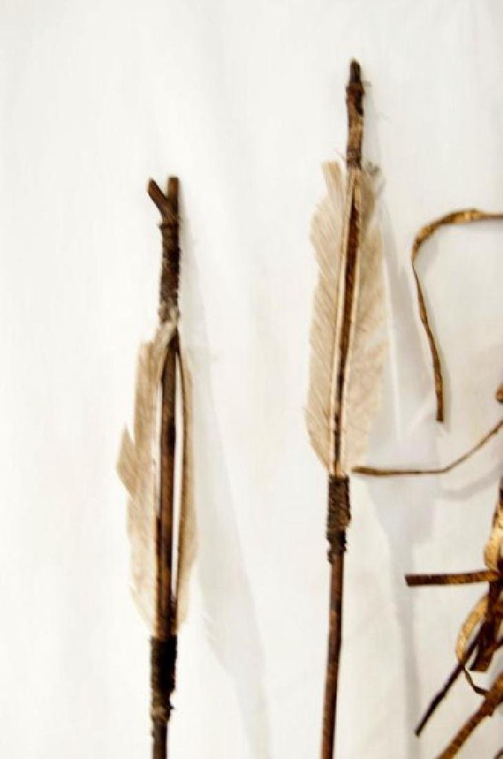 Plains Indians Painted Quill & Arrows - 7