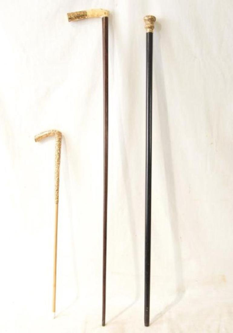 Two Antique gold tipped canes and baton