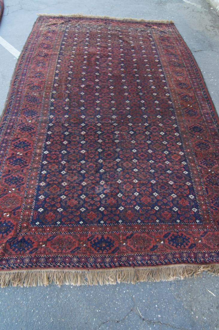 """19th C. Beluch rug -  excellent condition 72"""" x 116"""" - 2"""