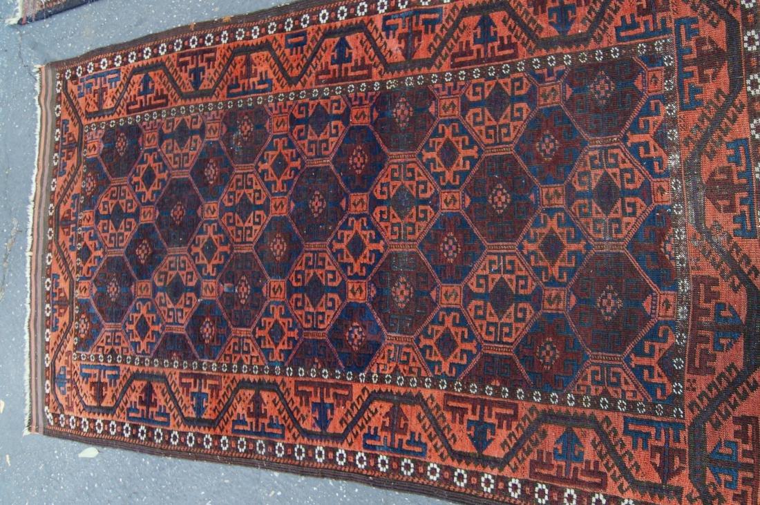 """19th cen. Beluch rug - 34"""" x 55"""" - 7"""