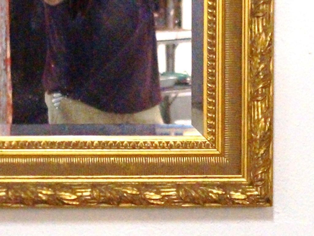 Beveled glass mirror ~ Fine gilt frame