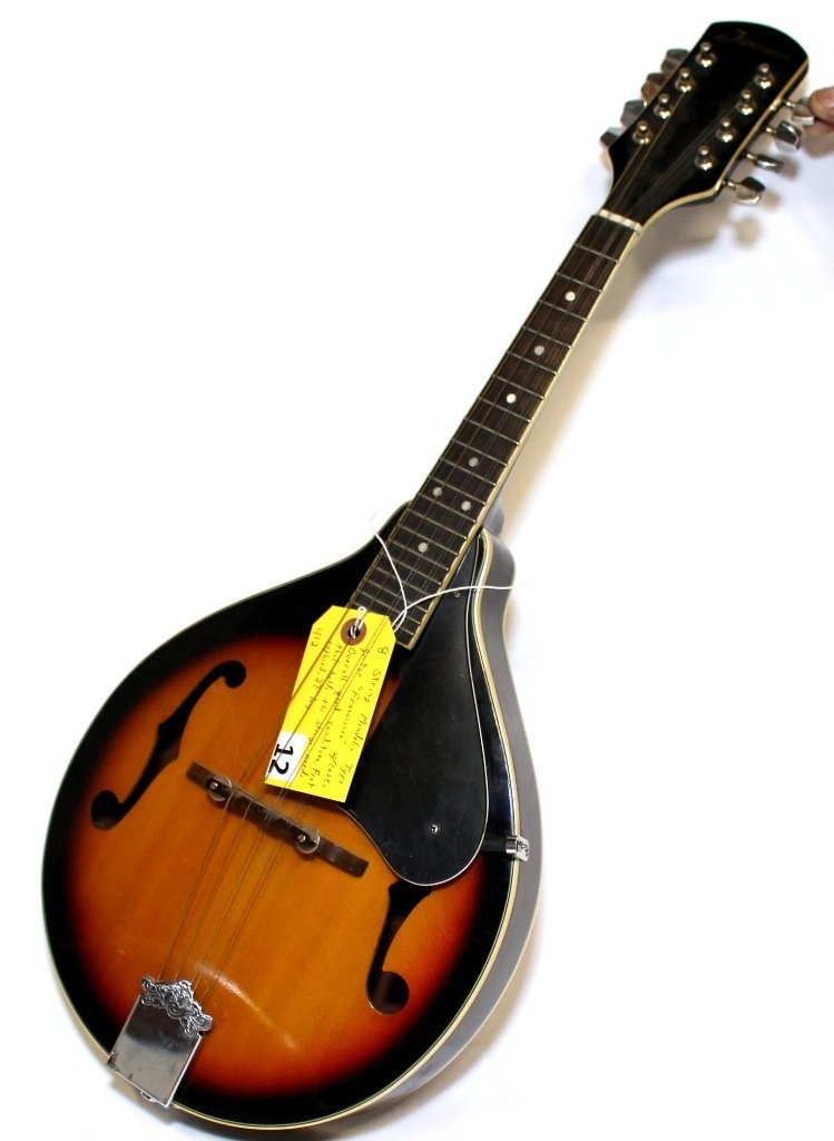 MANDOLIN GUITAR