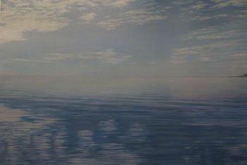 1004: A large unframed oil on canvas by Sophie Eynon en
