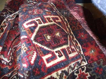 19B: A hand knotted Persian Shiraz rug the red field wi