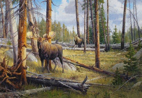 18: The Old  Burn - Wyoming Moose