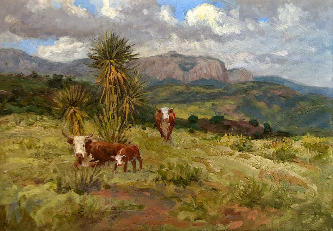 Herefords and Cactus by Wayne Baize (1943- )