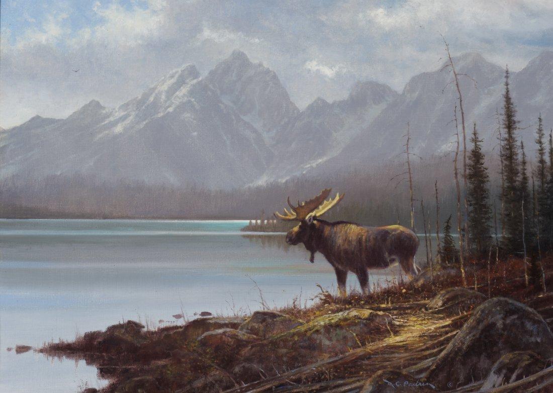 3: Wyoming Majesty,