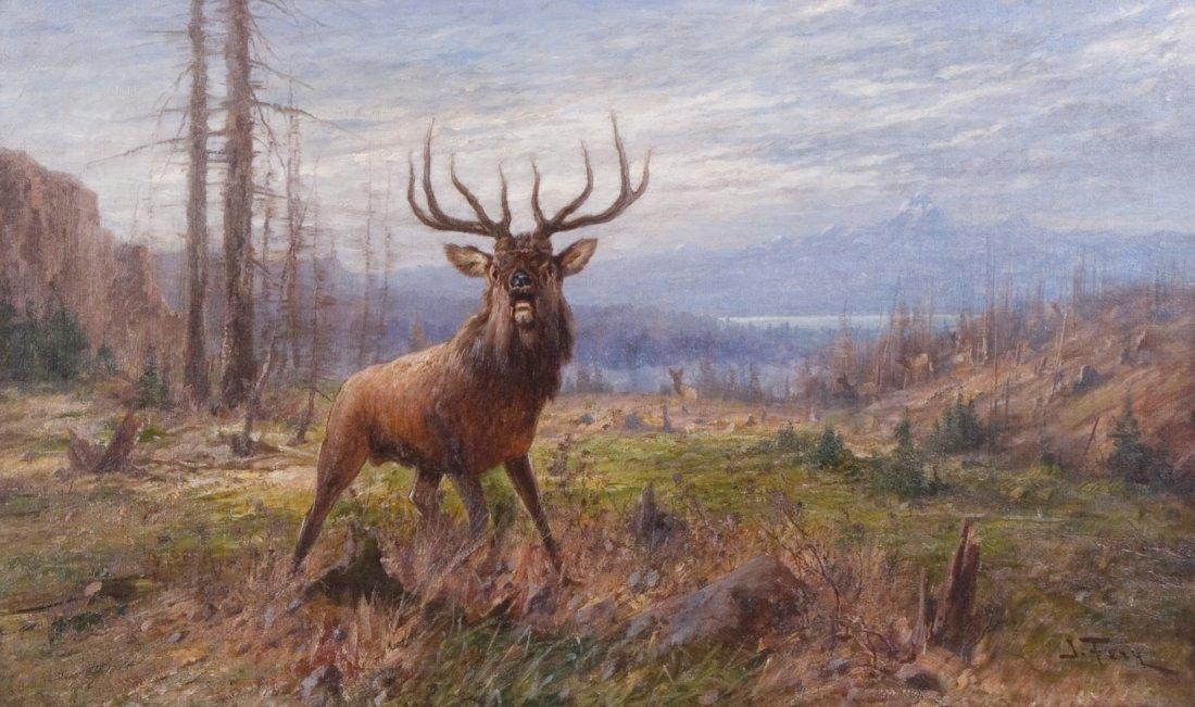 17: Elk,