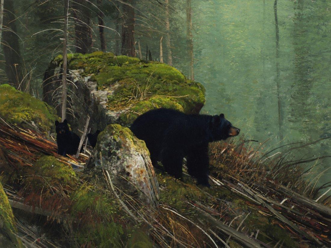 19: Yellowstone Bears,
