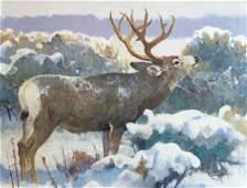 Winter Browse - Mule Deer by Bob Kuhn